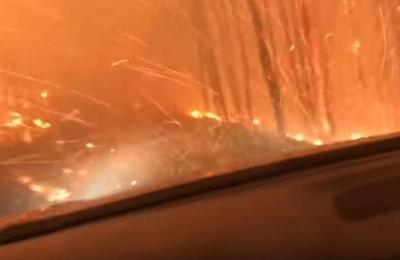 '¡Papá, no podemos salir!': el dramático escape de un padre y su hijo de un incendio forestal