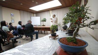 Conmemoran los 30 años de CPJ con demostración de bonsái