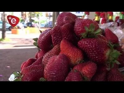 ¡Frutilla para todos! Vendedores bajan precios y hasta causan caos en Encarnación