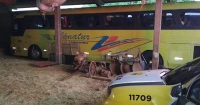 La Policía Federal del Brasil retiene cinco buses de turismo