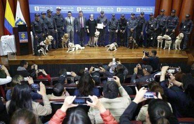 Condecoran a 14 perros jubilados