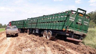 Se afirmó el precio del novillo luego de las abundantes lluvias