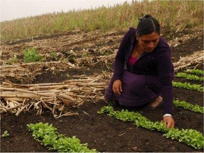 Comité de la ONU advierte de que el hambre afecta más a las mujeres