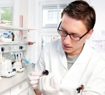 Científicos producen crías de ratón de parejas del mismo sexo