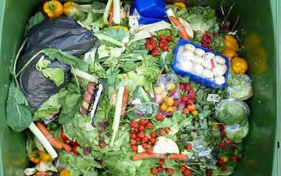 Salud rediseña programas de control de alimentos