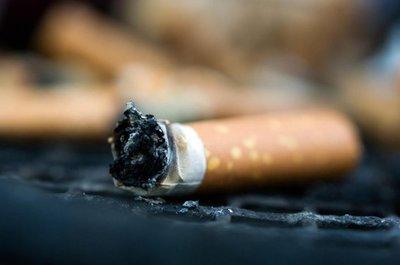Quieren desalentar producción del tabaco – Prensa 5