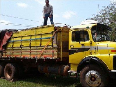 Incautan más de 300 postes de madera sin documentación en Yby Yaú