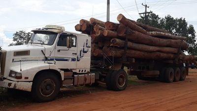 Incautan camión con rollos de madera de dudosa procedencia