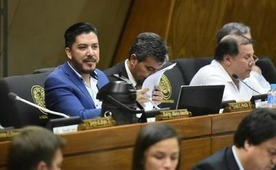 Diputados deciden elaborar ley de pérdida de investidura