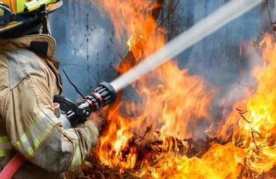 Científicos podrían tener la clave para controlar los incendios forestales