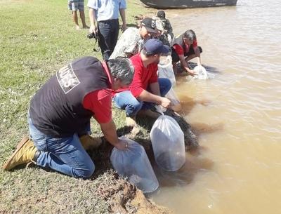 MADES siembra peces en el Río Paraná