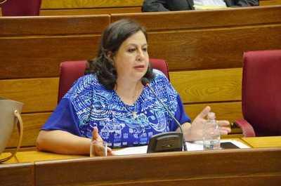 Senadora lamentó postergación de tratamiento de impuestos