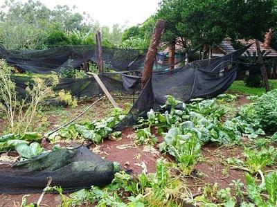 Campesinos insisten en seguro agrícola ante cambios climáticos