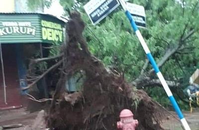 HOY / Misiones: tormenta deja con destrozos y sin energía a San Juan Bautista