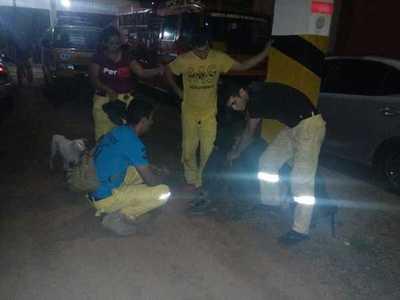 Recuperan objetos hurtados del Cuerpo de Bomberos Voluntarios Amarillo – Prensa 5