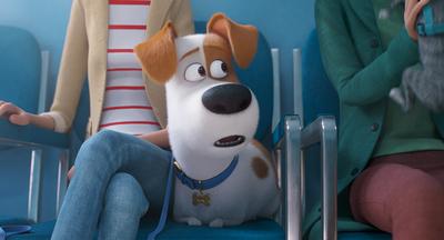 """Atrapante segundo trailer de """"La vida secreta de tus mascotas 2"""""""