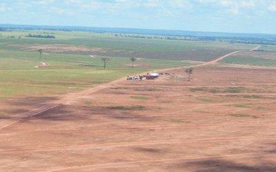 Fiscalía abre una causa penal por deforestación masiva en el Norte