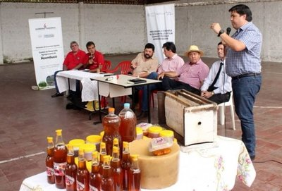 Ñeembucú: distribuirán miel de abeja en las escuelas