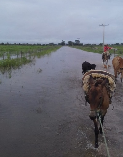 Poblaciones norteñas están aisladas por falta de caminos, tras las lluvias
