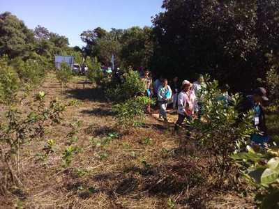 Unos 150 productores participaron de un día de campo