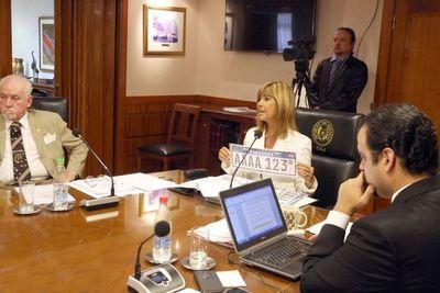 Chapas de Mercosur se implementará desde 2019