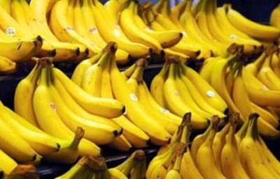 Buscan incluir una ración de banana en la merienda escolar