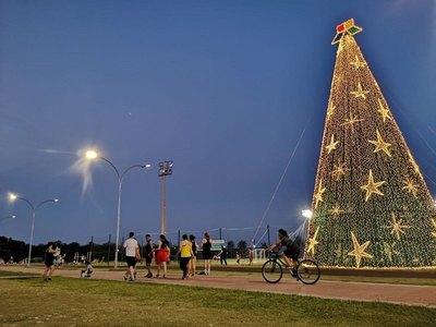 """Feró"" árbol navideño adorna Hernandarias"