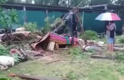 Árbol cayó y mató a una mujer en Zeballos Cué
