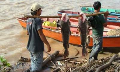 Sigue el pago de subsidio a pescadores de todo el país