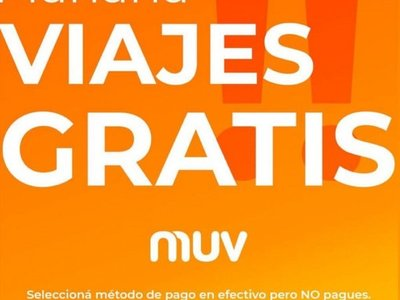 """Ofrecen MUV gratis ante el """"enjambre amarillo"""""""