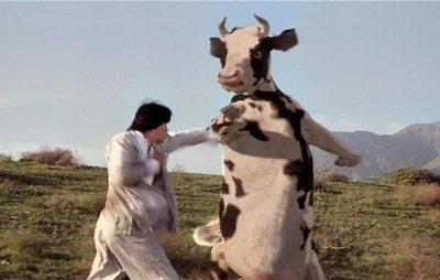 "Destaque internacional a la ""vaca karateca"" paraguaya"