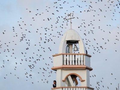 Las campanas de Balangiga vuelven a repicar 117 años después