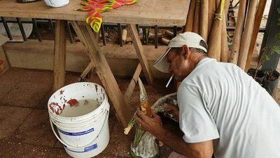 Reparando elementos del pesebre en San Lorenzo
