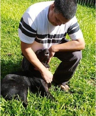 Lea, la jagua'i que ayuda  a un niño autista