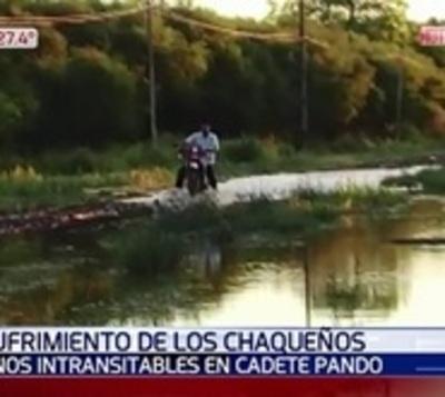 Represas privadas inundan caminos de comunidades en el Chaco