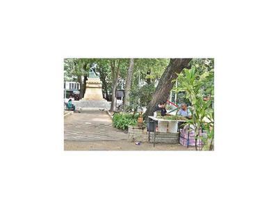 Plantean crear cultivos didácticos de pohã ñana en plazas asuncenas
