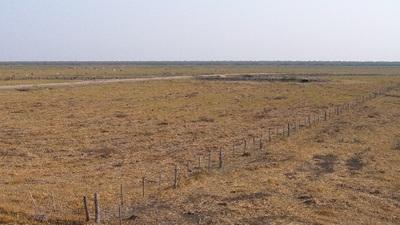 Paraguay perdió 265.590 hectáreas de bosque entre agosto de 2017 y 2018