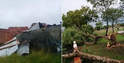 Temporal causa severos daños en el sur