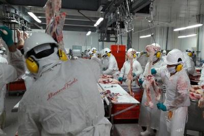 Por la vacunación de la aftosa bajo la oferta de ganado para  faena pero los precios no aumentaron