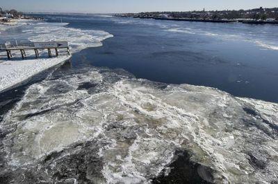 Norte de EEUU se petrifica con ola de frío polar