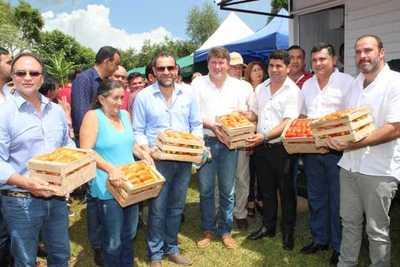 Gobierno presentó plan para mejorar producción y comercialización de tomate
