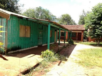 Termitas carcomen paredes y techos