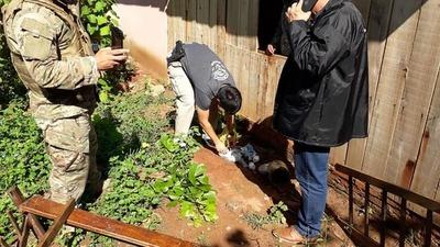Caaguazú: Fiscalía detuvo a 3 personas e incautó gran cantidad de drogas en allanamientos simultáneos