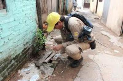 Alerta en Alto Paraná ante proliferación de casos de dengue