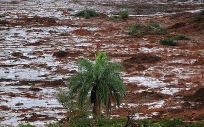 Gobierno dará créditos para reactivar economía en zona de tragedia en Brasil