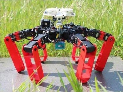 Un robot con patas que se inspira en una hormiga logra desplazase sin GPS