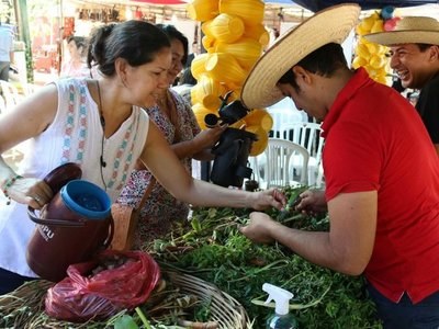 Guampa y bombilla, artesanías que sobreviven gracias al tereré
