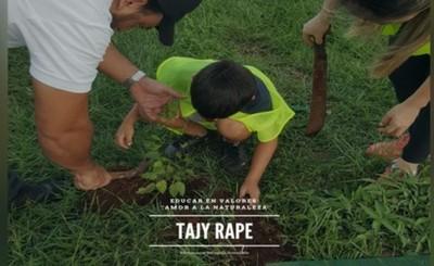 Buscan plantar árboles de Tajy por supercarretera