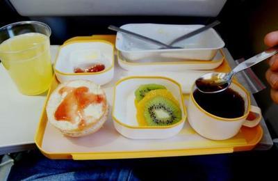 'Vomité mis entrañas':pasajero de avión encuentra asquerosa 'sorpresa' en su comida