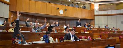 Senado se ratifica en Ley que reglamenta 100% de sueldo mínimo al trabajo doméstico